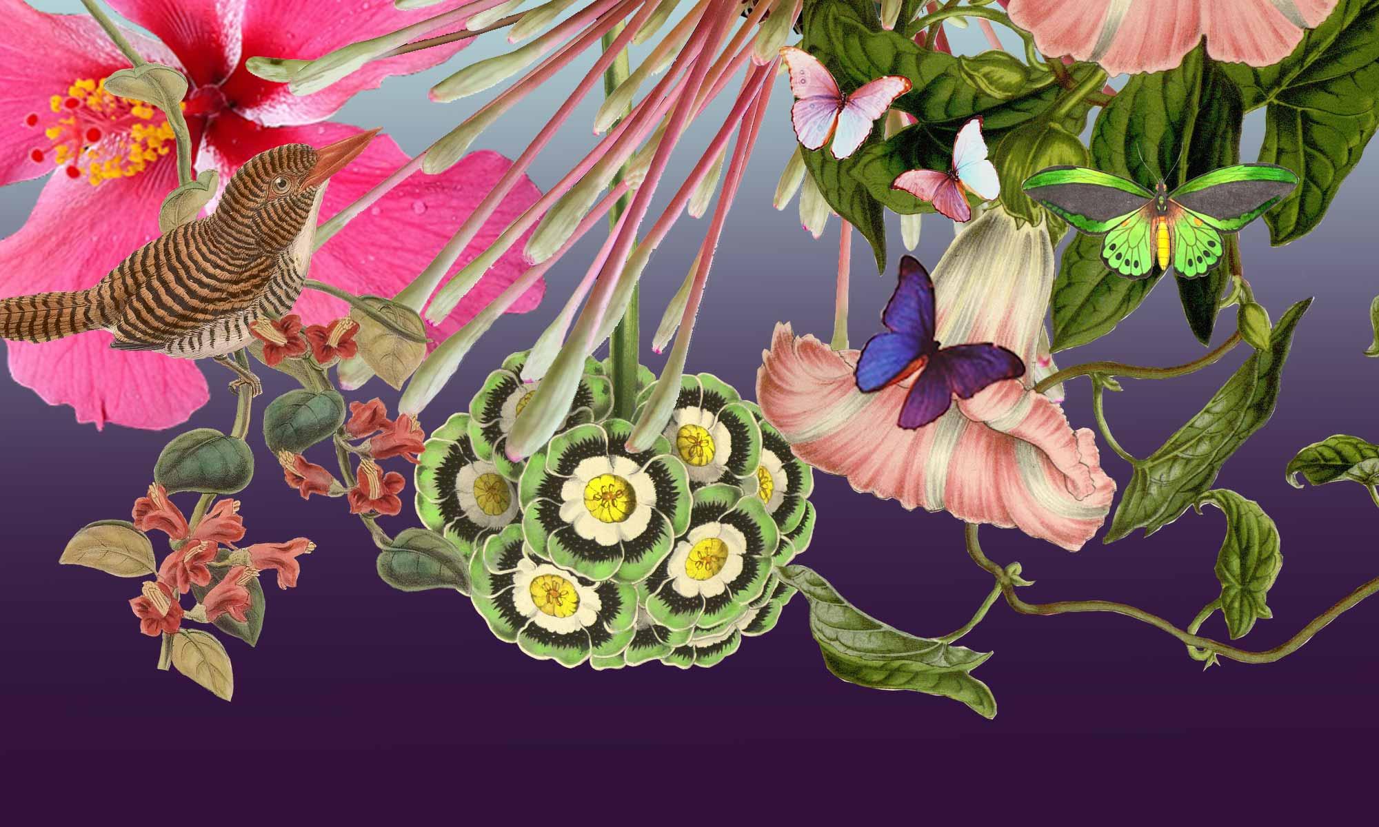 Blume und Stil Oberursel Blumenladen